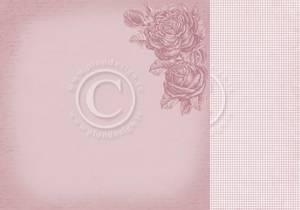 Bilde av Pion Design - PD28001 - Everlasting Memories - Timeless roses