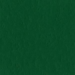 Bilde av Bazzill - Mono - 19-5414 - Classic Green