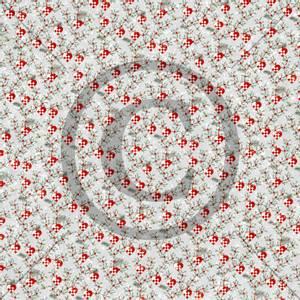 Bilde av Papirdesign PD2000430 - Mens vi venter - Julekurver