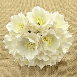 Bilde av Flowers - Lotus - SAA-314 - White - 25stk